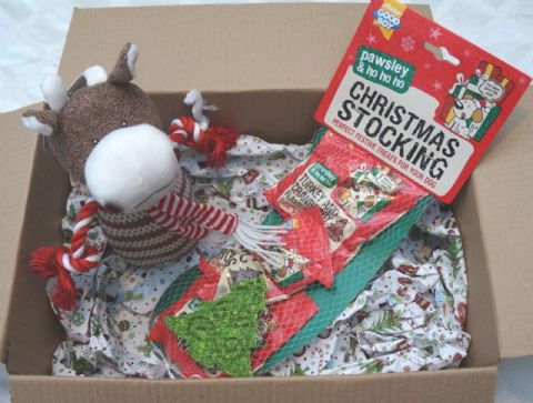 CHRISTMAS DOG TOY GIFT BOX WITH PLUSH SQUEAKY COW & TREAT FILLED STOCKING